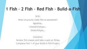 1 Fish 2 Fish Red Fish BuildaFish Drill