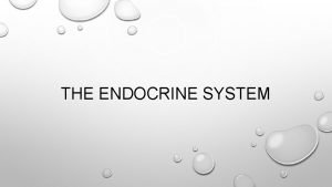THE ENDOCRINE SYSTEM OVERVIEW OF THE ENDOCRINE SYSTEM