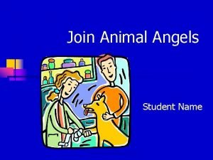 Join Animal Angels Student Name Animal Rescue Foundation