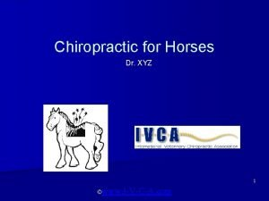 Chiropractic for Horses Dr XYZ 1 www IVCA
