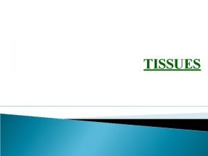 TISSUES 1 Tissues Tissue is a group of