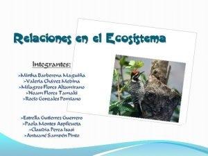 El concepto de ecosistema es realmente importante para