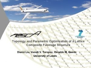 Topology and Parametric Optimisation of a Lattice Composite