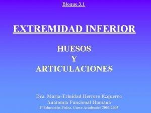 Bloque 3 1 EXTREMIDAD INFERIOR HUESOS Y ARTICULACIONES