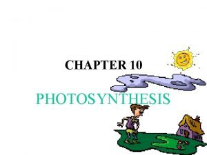 CHAPTER 10 PHOTOSYNTHESIS I PHOTOSYNTHESIS IN NATURE PLANTS