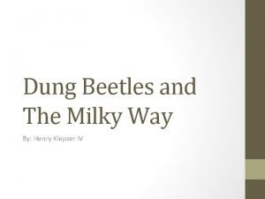 Dung Beetles and The Milky Way By Henry