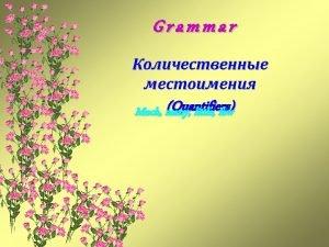 Grammar Quantifiers Much many little few Much many