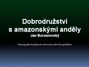 Dobrodrustv s amazonskmi andly Jan Burzanovsk Monografie komplexn