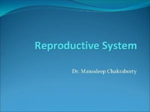 Reproductive System Dr Manodeep Chakraborty Content Male and