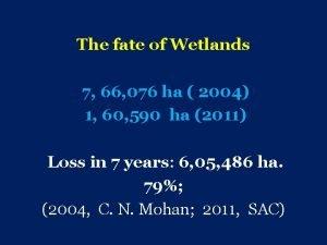 The fate of Wetlands 7 66 076 ha