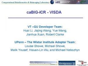 Computational Bioinformatics Bioimaging Laboratory ca BIGICR VISDA VT