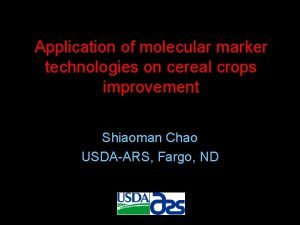 Application of molecular marker technologies on cereal crops