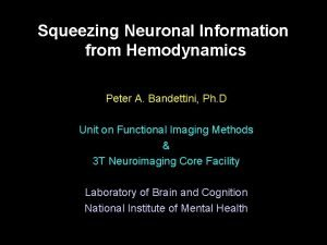 Squeezing Neuronal Information from Hemodynamics Peter A Bandettini