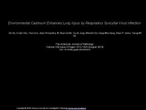 Environmental Cadmium Enhances Lung Injury by Respiratory Syncytial