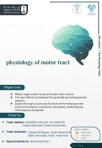 4 th Lecture The Physiology Team physiology of