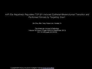 mi R30 a Negatively Regulates TGF 1Induced EpithelialMesenchymal