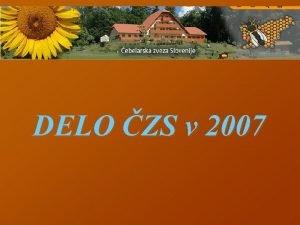 DELO ZS v 2007 Organizacija dela na ZS