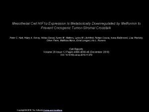 Mesothelial Cell HIF 1 Expression Is Metabolically Downregulated
