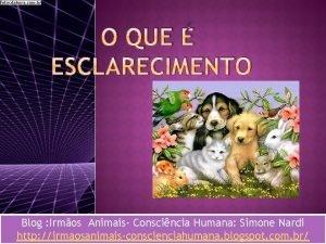 O QUE ESCLARECIMENTO Blog Irmos Animais Conscincia Humana