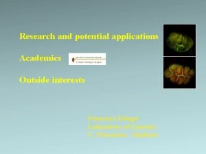 Research and potential applications Academics Outside interests Francisco