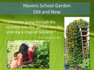 Havens School Garden Old and New I remember