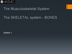 The Musculoskeletal System The SKELETAL system BONES Section
