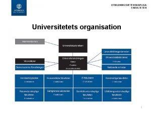 UTBILDNINGSVETENSKAPLIGA FAKULTETEN Universitetets organisation 1 UTBILDNINGSVETENSKAPLIGA FAKULTETEN Utbildningsvetenskapliga