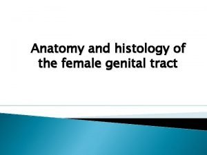 Anatomy and histology of the female genital tract