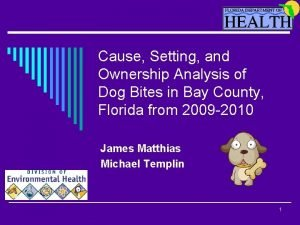 Cause Setting and Ownership Analysis of Dog Bites