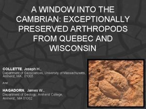 A WINDOW INTO THE CAMBRIAN EXCEPTIONALLY PRESERVED ARTHROPODS