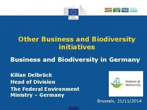 Other Business and Biodiversity initiatives Business and Biodiversity