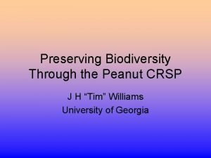 Preserving Biodiversity Through the Peanut CRSP J H