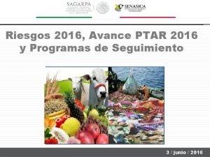 Riesgos 2016 Avance PTAR 2016 y Programas de
