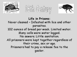 Life in Prisons Never cleaned Infested with lice