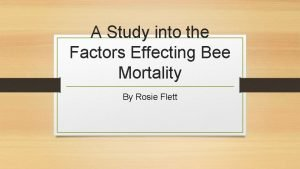A Study into the Factors Effecting Bee Mortality