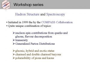 Workshop series Hadron Structure and Spectroscopy Initiated in