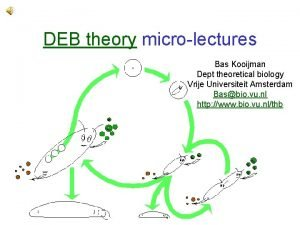 DEB theory microlectures Bas Kooijman Dept theoretical biology