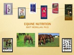 EQUINE NUTRITION MATT MCMILLAN PH D EQUINE NUTRITION