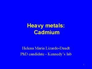 Heavy metals Cadmium Helena Maria LizardoDaudt Ph D