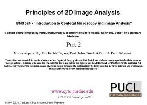 Principles of 2 D Image Analysis BMS 524