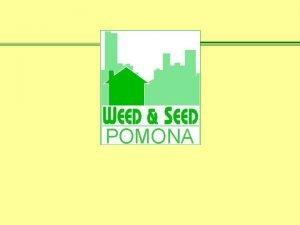 POMONA California State Polytechnic University Pomona Weed Seed