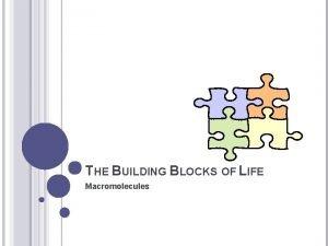 THE BUILDING BLOCKS OF LIFE Macromolecules CARBON Carbon