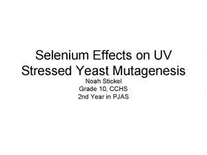 Selenium Effects on UV Stressed Yeast Mutagenesis Noah