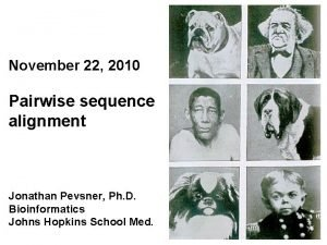 November 22 2010 Pairwise sequence alignment Jonathan Pevsner
