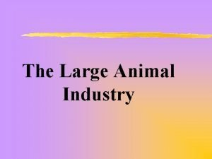 The Large Animal Industry The Meat Industry z
