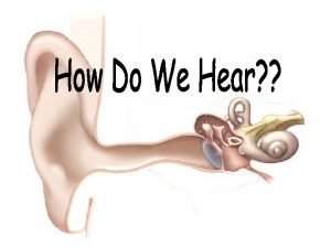 l Hearing is one of the five senses