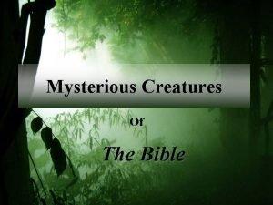 Mysterious Creatures Of The Bible Behemoth Job 40