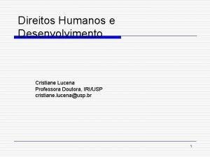 Direitos Humanos e Desenvolvimento Cristiane Lucena Professora Doutora