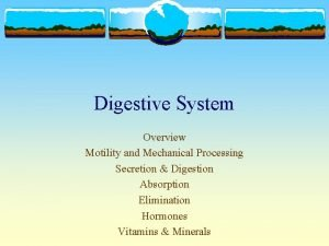 Digestive System Overview Motility and Mechanical Processing Secretion