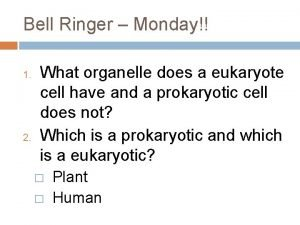 Bell Ringer Monday 1 2 What organelle does